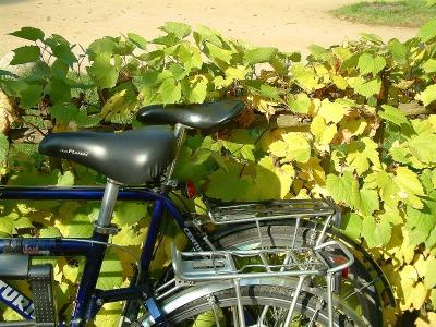 mit dem Fahrrad durch Berlin