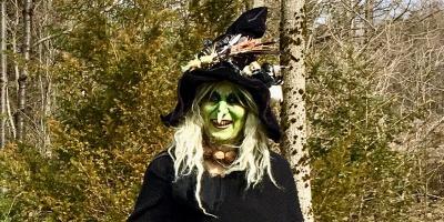 Harzer Hexe